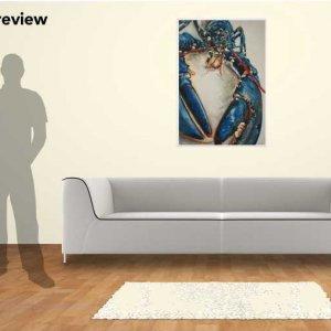 Lobster Blue, 100cm x 70cm giclee print