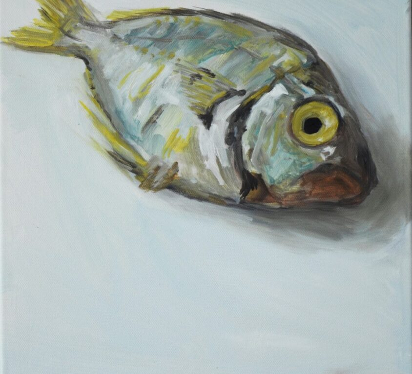 Yellow Blue Fish Print 76cm x 76cm