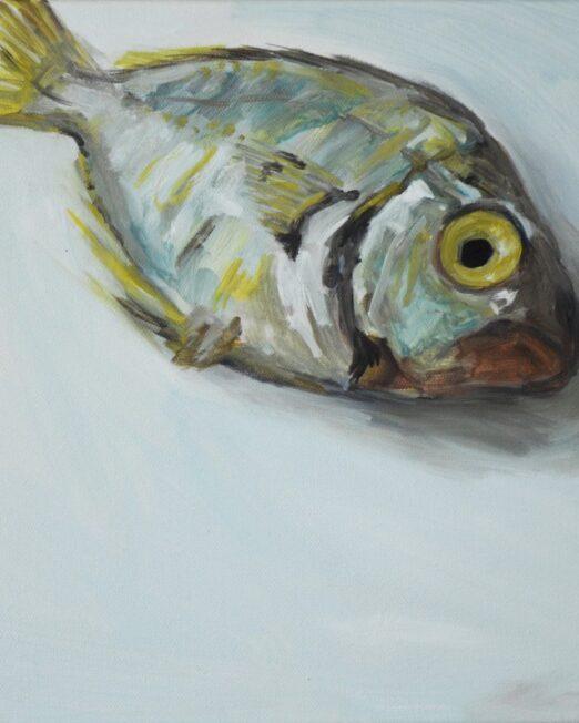 Single-Fish-study-1024x1024