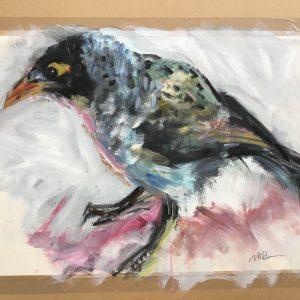 Myna-Bird-300x300