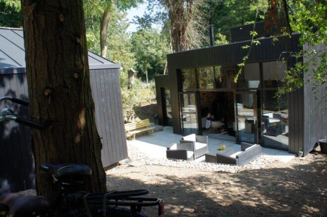 14-Tree-studio-and-terrace-1024x681
