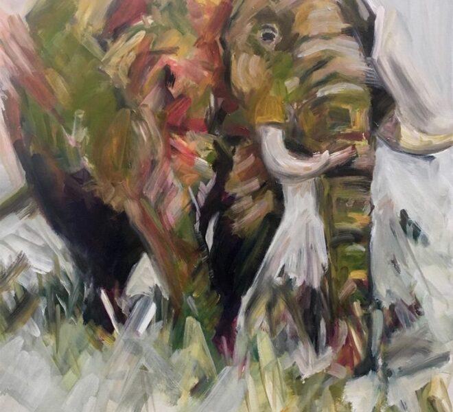 Contrast-elephant-757x1024