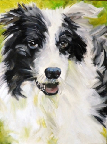 dog commission, pet portrait