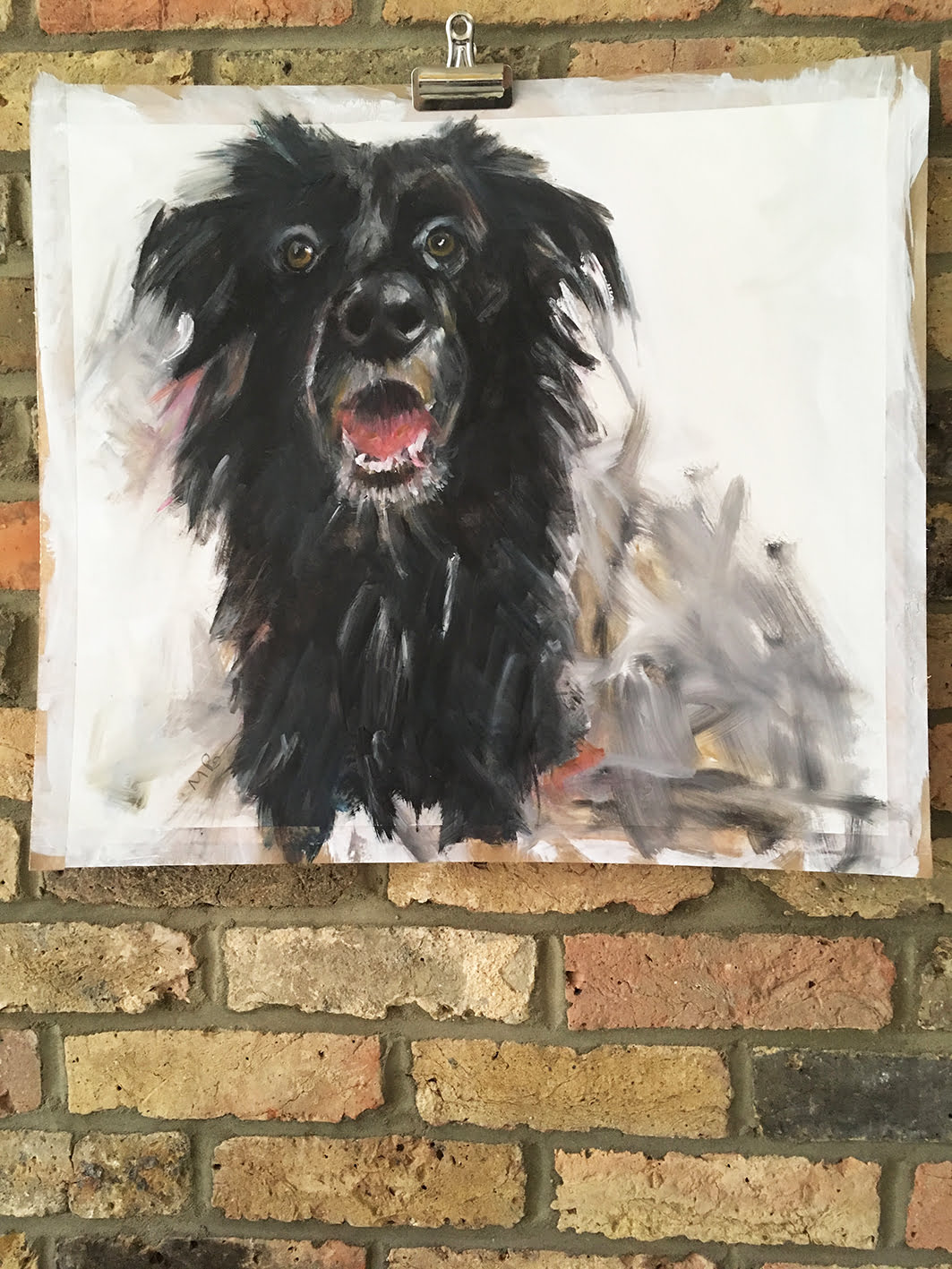 Merry the Dog, oil on cartridge paper