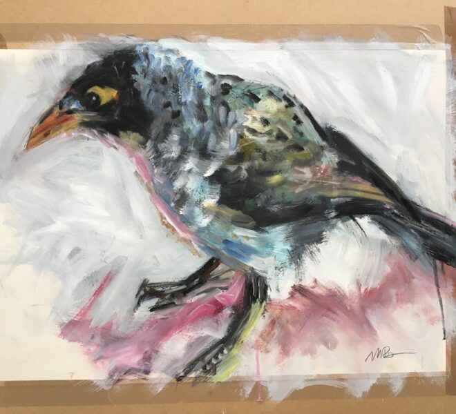 Myna Bird oil on paper
