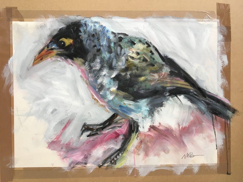 Myna Bird oil on paper