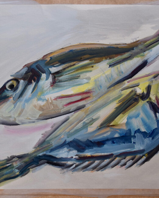 Two Blue Fish Study, 33 x 48cm oil on paper