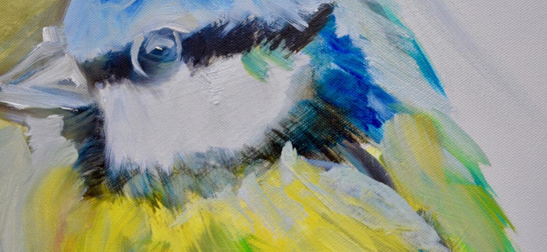 Blue Tit, 50 x 50cm oil on canvas
