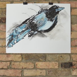 Magpie Two, ink and oil paint on paper