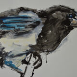 Magpie ink study with oil paint