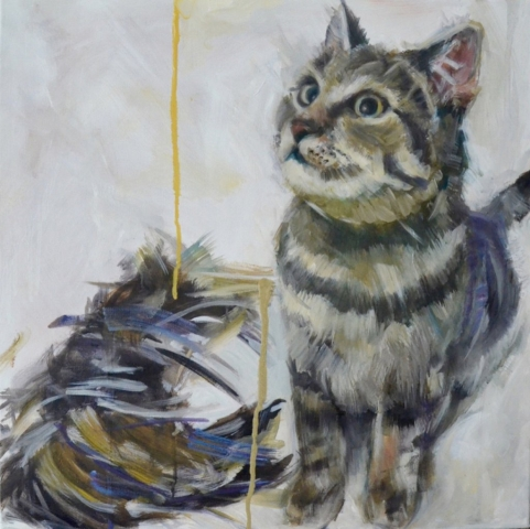 Cat and Feathers, 50 x 50cm