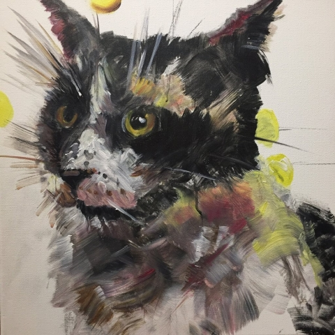 Yoko the Cat, 50 x 50cm