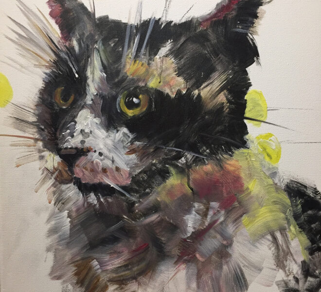 Yoko the Cat, 50 x 50cm