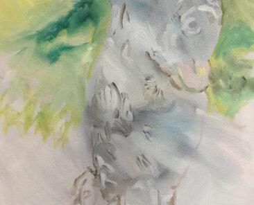 Ralph, 50 x 60cm oil on canvas