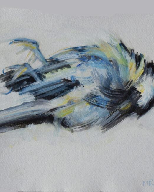 SS Bird Study oil on paper, 20cm x 20cm
