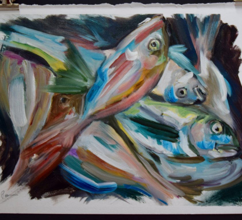 Menorcan Fish Study 2