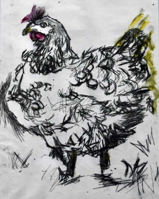 Chicken-Etching 4/4 - 22 x 32cm, drypoint etching framed