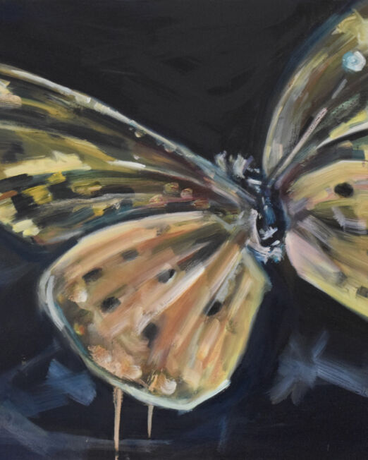 Orange Butterfly 50 x 70cm, oil on canvas