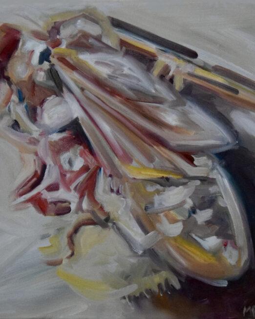 Small Hornet 40 x 45cm, oil on canvas