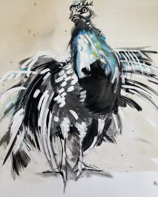 Peacock 50 x 65cm, ink and gouache on painting paper