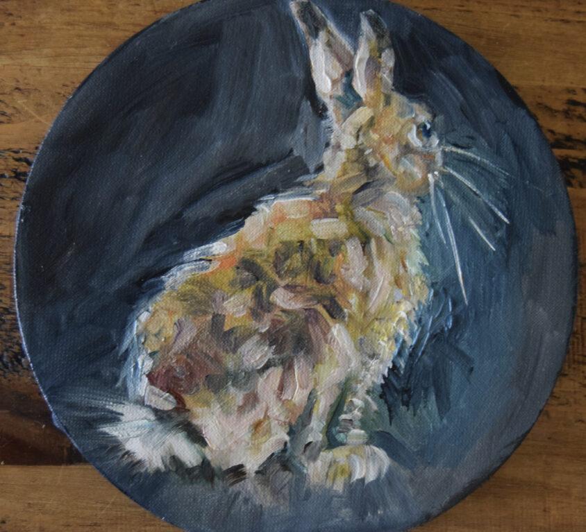 Round Hare One