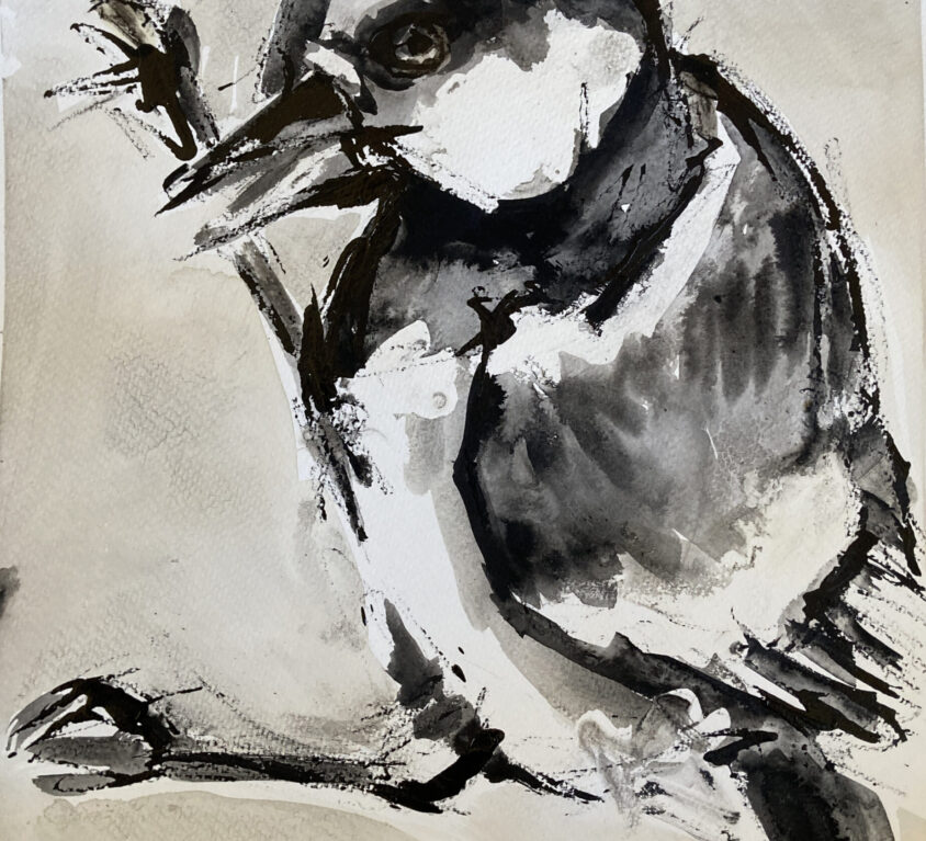 Ink Great Tit