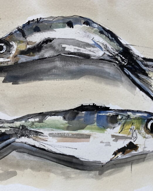 Two Sardines 21 x 29.5cm, watercolour, gouache, ink on paper