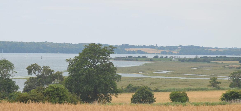 Shotley Marshes, Suffolk UK