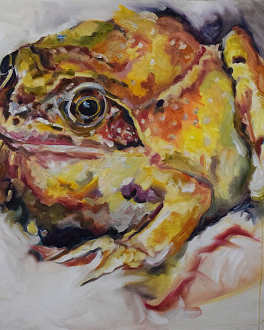 Toad 100 x 100cm, oil on canvas