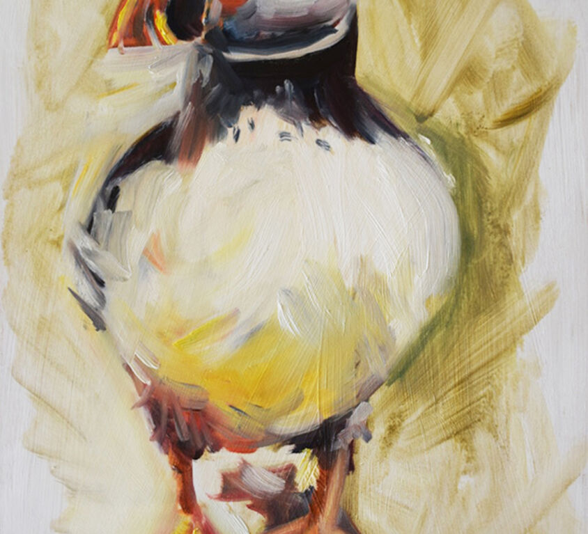 Puffin Front